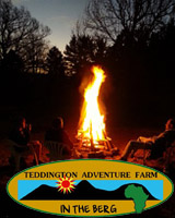 TEDDINGTON ADVENTURE FARM